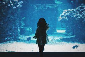 sea water ocean kid