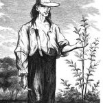 Ag in the Classroom: Johnny Appleseed and the Illinois Bicentennial Tree