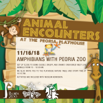 Animal Encounters at the PlayHouse: Amphibians