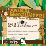 Animal Encounters at the PlayHouse: Arachnids