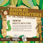 Animal Encounters at the PlayHouse: Insects