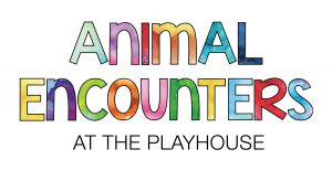Animal Encounters at the PlayHouse