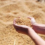 Ag in the Classroom: Spectacular Soy