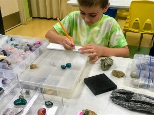Fossils Rock Workshop: Make a Mini-Exhibit
