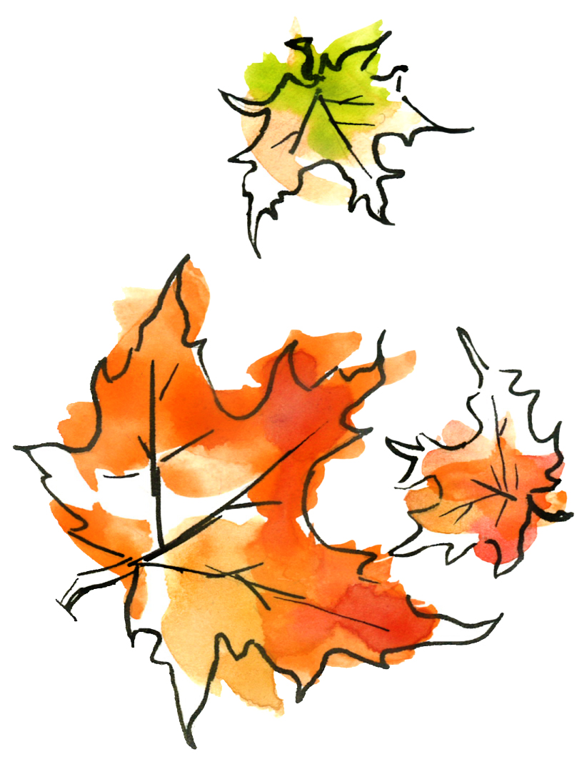 Tot Time: Fall
