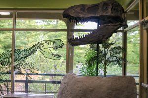 STEAM Homeschool: Paleontologist